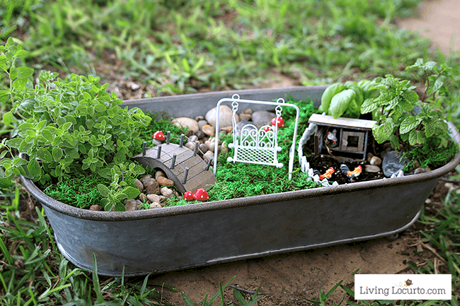 How To Make The Cutest Fairy Garden For Your Kitchen