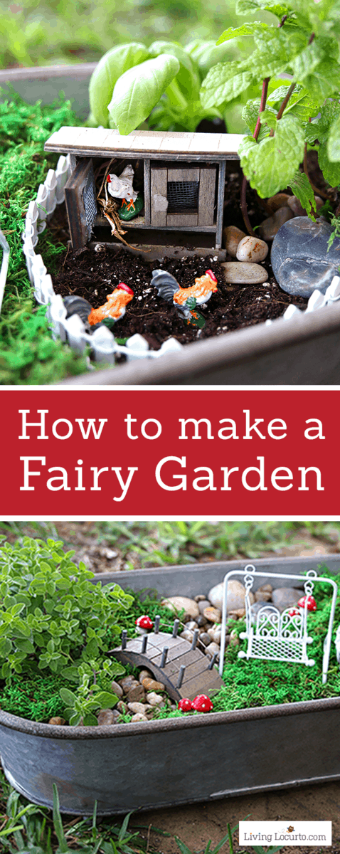 How to Make the CUTEST Fairy Garden! This Fairy Garden is a fun herb garden for your kitchen! Easy tutorial for how to make a mini fairy garden for your home. Cute kids craft ideas. #garden #craft #kitchen #plants #herbs #diy #fairy #fairygarden #flowers #livinglocurto