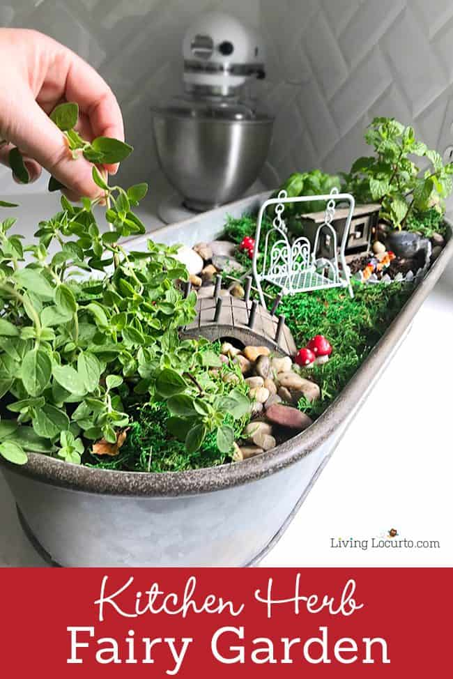 Fun Magical Fairy Party Ideas! An Herb Fairy Garden is a fun container garden for your kitchen! Easy tutorial for how to make a mini fairy garden for your home. Cute kids craft ideas.