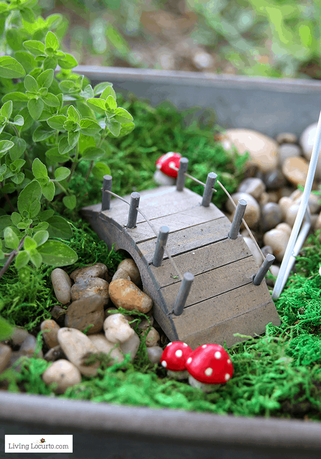 Tips for making an Herb Fairy Garden. Easy container garden for your kitchen! Easy tutorial for how to make a mini fairy garden for your home.