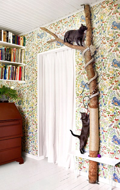 Cat toys Amazing DIY Cat Home Decor Ideas