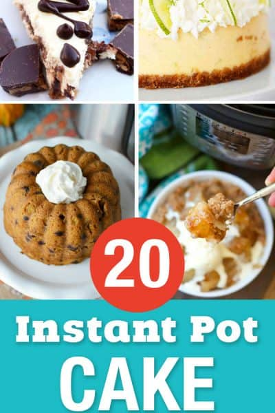 20 Instant Pot Cake Recipes