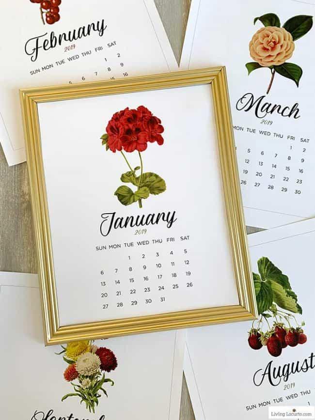 Free Printable Calendar - January