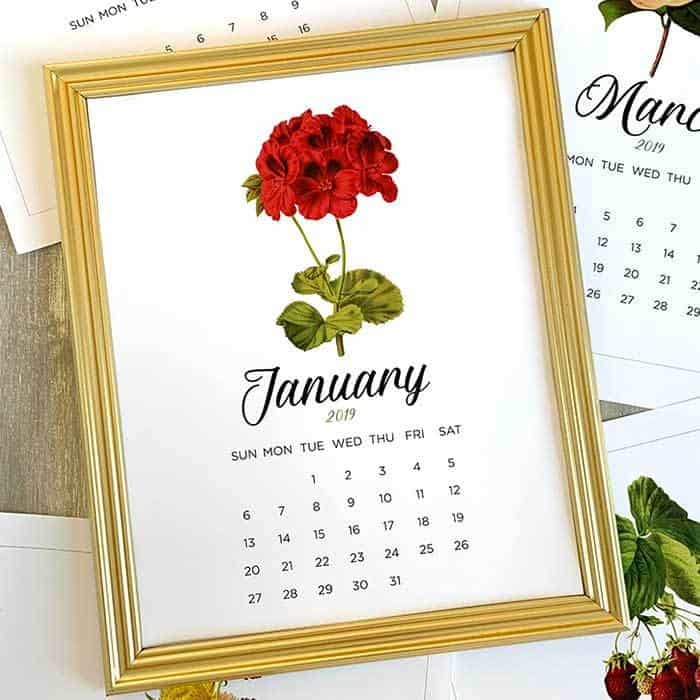 Enjoy a beautiful free printable calendar for January 2019. This pretty vintage floral print design is a great way to decorate your home and stay organized.