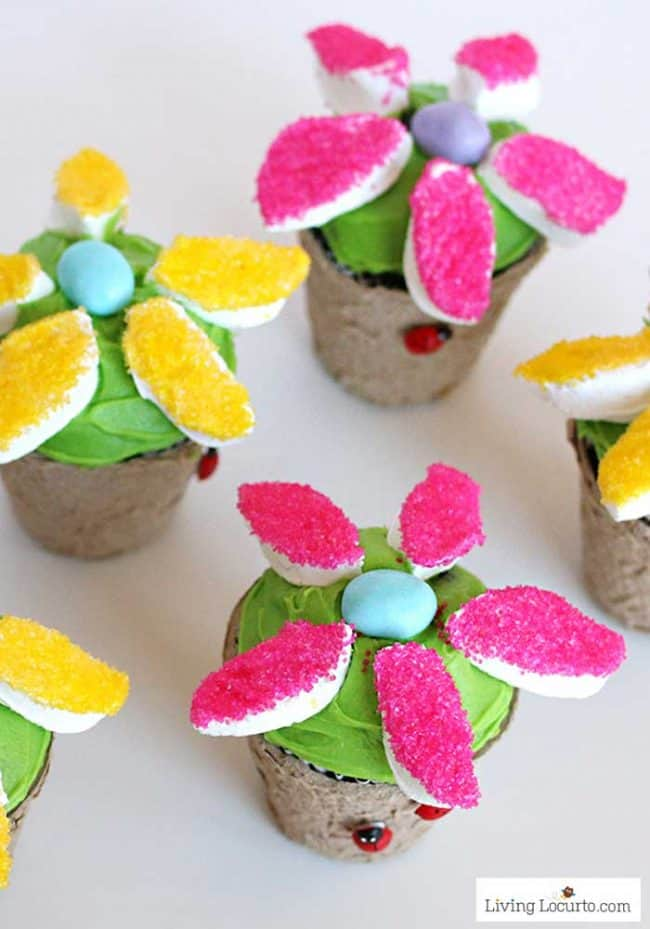 Marshmallow flower cupcakes are a perfect dessert recipe for any occasion.