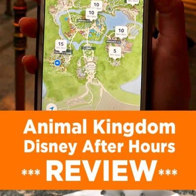 Disney After Hours at Animal Kingdom (REVIEW)