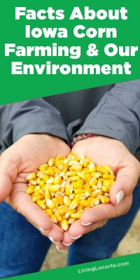 Facts about Iowa Corn Farming and the environment