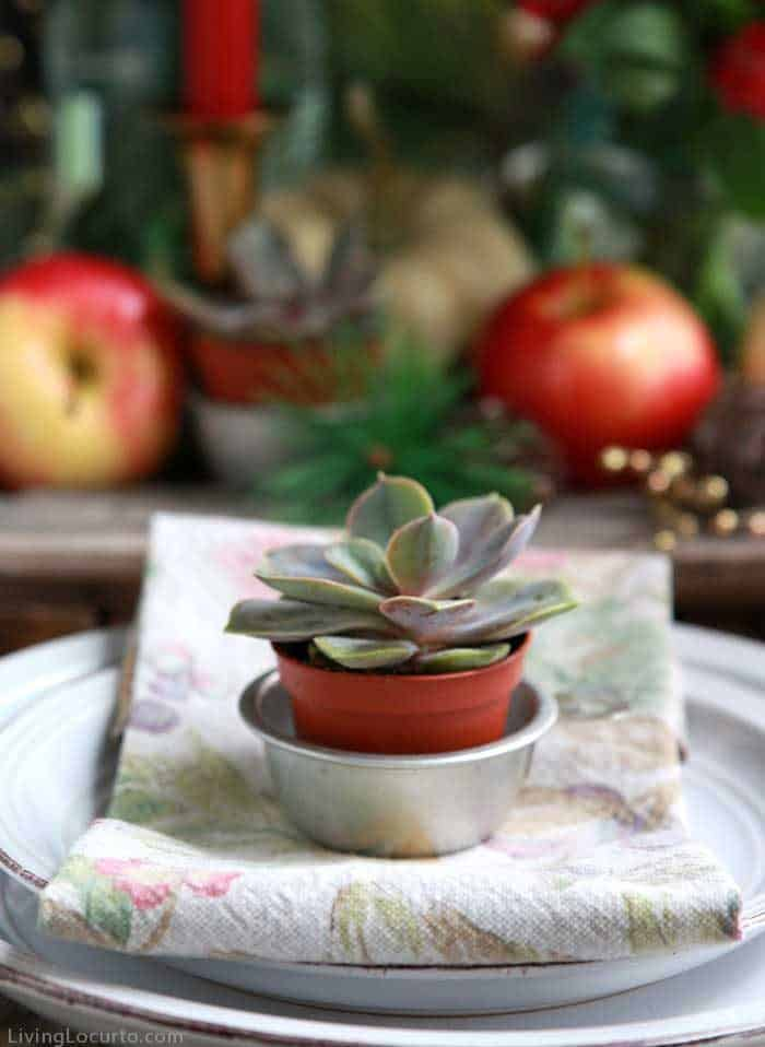 Easy Holiday Recipes and place setting with antique measuring cups to hold the succulent pots