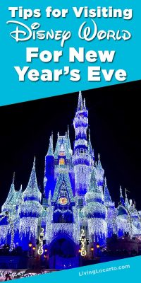 Disney World Magic Kingdom New Years Eve Tips