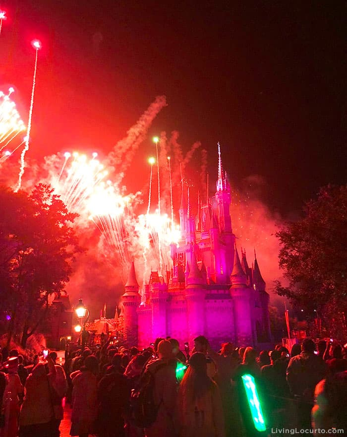 Tips for Disney World's Magic Kingdom on New Year's Eve Fireworks